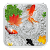 KOI Cool Fish Live Wallpaper file APK for Gaming PC/PS3/PS4 Smart TV