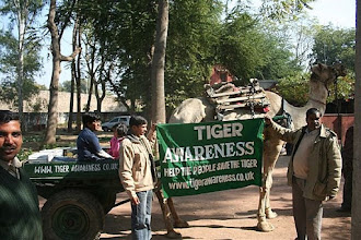 Photo: Tiger Awareness donated a camel cart to a hunter family to give alternative employment 2008