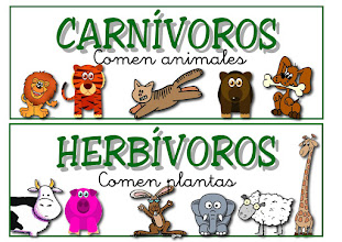 Photo: carnivoros herbivoros