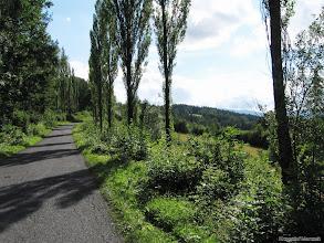 Photo: Droga z Gruszkowa do Wojkowa
