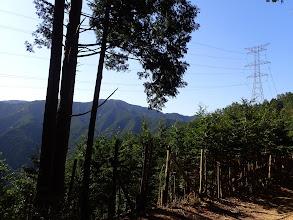 目指す四寸岩山と歩く稜線