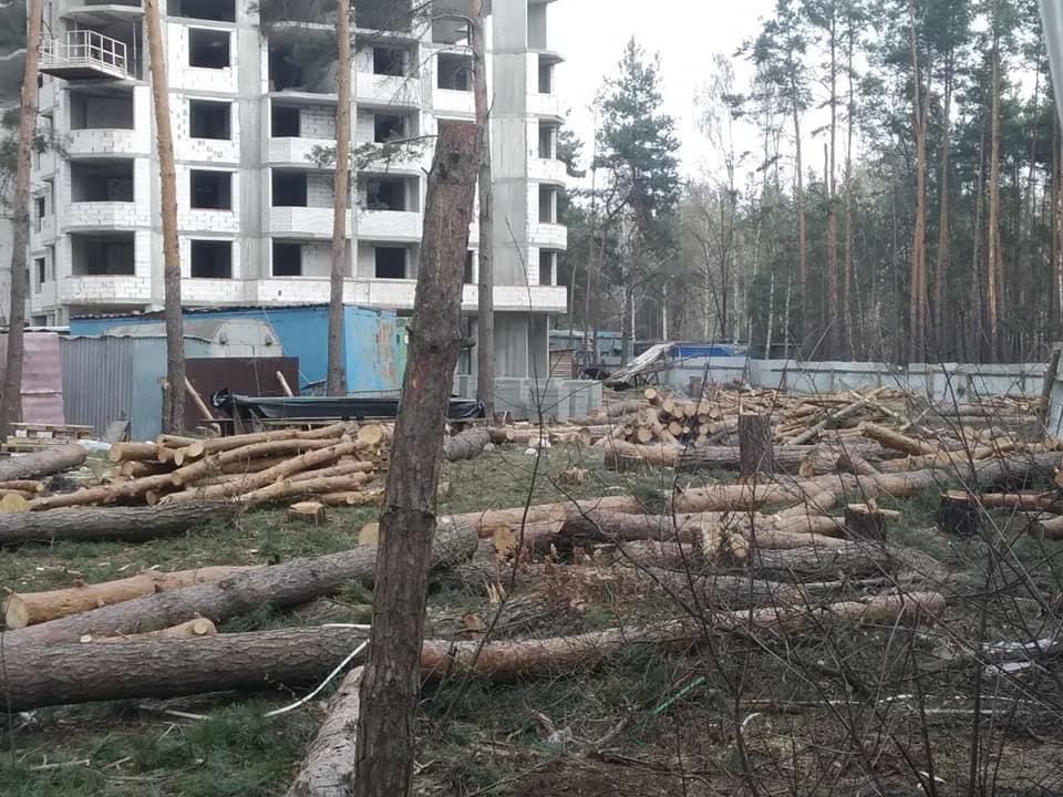 Знищення лісу та заплави зробило Ірпінь беззахисним перед стихією