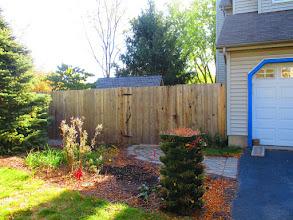 Photo: 4th & 5th rain garden for 2015