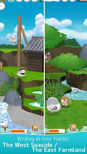 Tori Watch 2 - fluffy small birds - ss1
