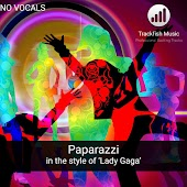 Paparazzi (in the style of 'Lady Gaga') [Karaoke Version]