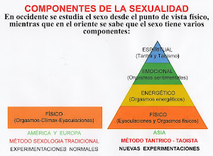 Photo: ESPAÑOL: Método fazsufu - Componentes de la sexualidad humana. ENGLISH: Method fazsufu - Components of human sexuality. CHINO: 方法 fazsufu - 人類性行為的元件. ÁRABE: Fazsufu الأسلوب - مكونات النشاط الجنسي البشري