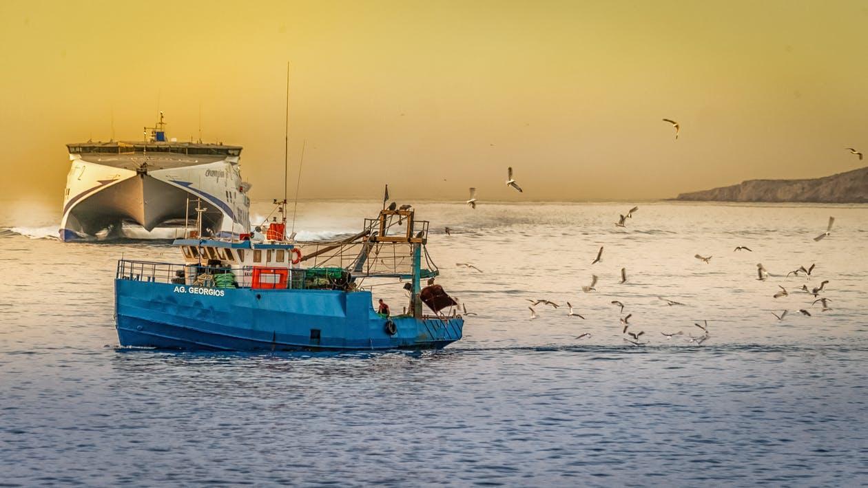 Kostenloses Stock Foto zu am meer, angeln, blau