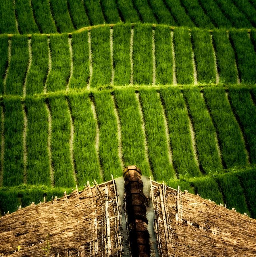by Ben Kopilow - Landscapes Travel
