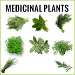 Medicinal plants Book 1.0.3