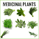 Download Medicinal plants Book For PC Windows and Mac