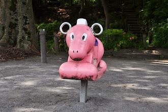 Photo: Uma (ló), Edogawabashi