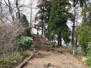 青葉山山頂(東峰)