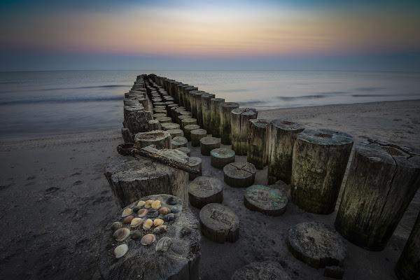 pontile sul mare di massimo bertozzi