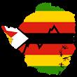 Zim Rates icon