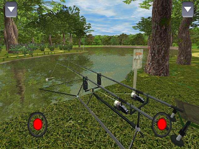 3DCARP Screenshot