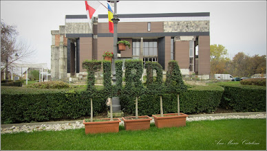 Photo: Topiary - din Piata 1 Decembrie 1918 - 2016.11.27