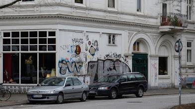 Photo: Möwe Sturzflug; Clemens-Schultz-Straße 96