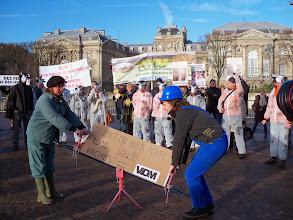 Photo: 1000 vaches : un projet à empêcher  http://www.l214.com/projet-elevage-mille-vaches-somme