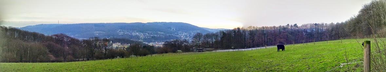 Photo: An der Bison-Wiese zwischen Tücking und Geweke: ein Blick nach Kückelhausen (Panorama-Ansicht erzeugt durch Google+).