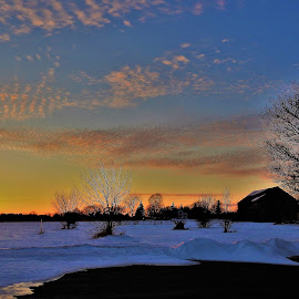 Sunny Glow by Kathy Woods Booth - Landscapes Sunsets & Sunrises ( barn, sunset, winter, glow, farmland, sundown, snowy )