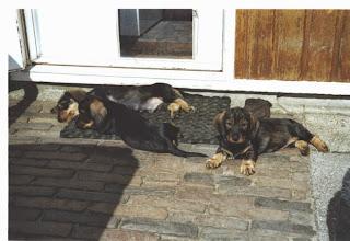 Photo: Benthe rechts