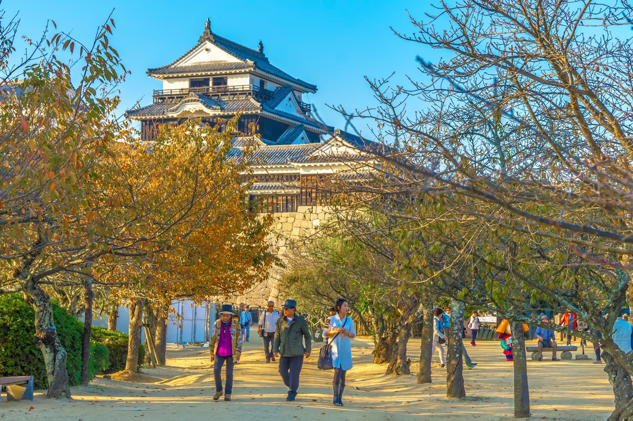 Matsuyama Castle2