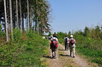 Photo: L'approche de la pause de midi dans le bois des Dailles