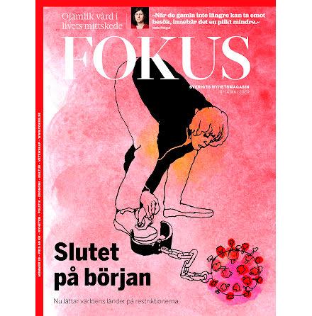 Fokus #19/20