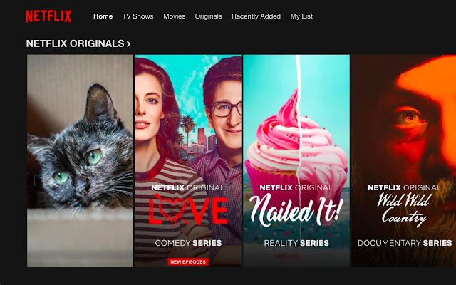 Netflix Humeownitizer
