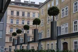 Photo: Dekoelemente mit Bäumen