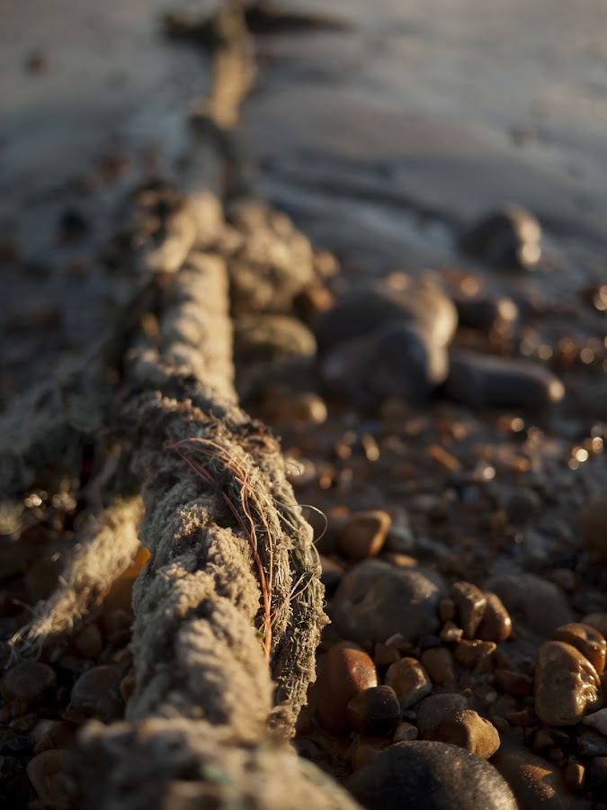 by Daniel Milton - Artistic Objects Other Objects ( water, england, costal, uk, rope, sea, beach )