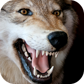 Predator Calls Android APK Download Free By Leafgreen