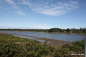 Photo: (Year 2) Day 354 - Coming in to Bandon