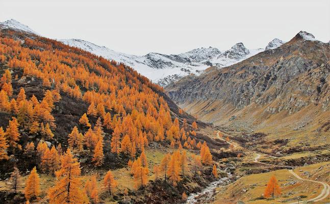 I colori dell'autunno di ScrofaniRosaria