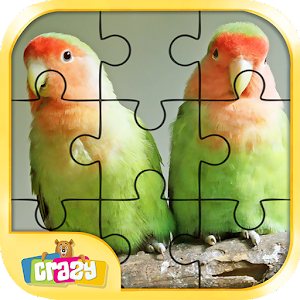 Bird Puzzle Toddler and Kids