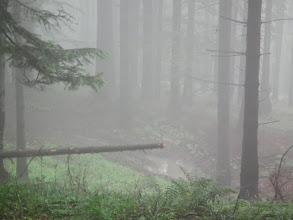 Photo: W drodze do schroniska cały czas pada.