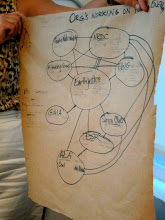 Photo: network map of eco-tech organizations through shared issues & strategies