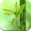 Bamboo Wallpaper HD icon
