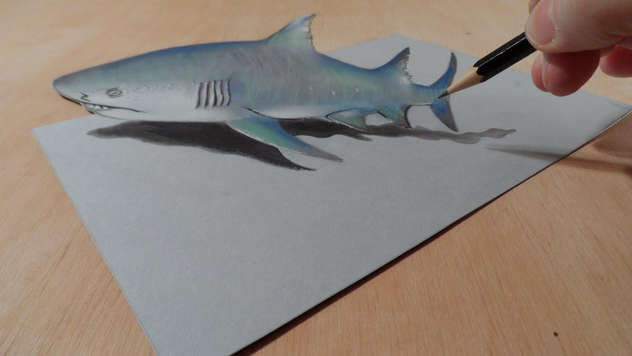 how to draw animals 3d new android apps on google play