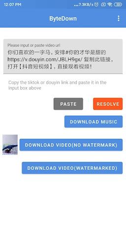 ByteDown- VideoDownloader for TikTok and Douyin 0.0.2 screenshots 3