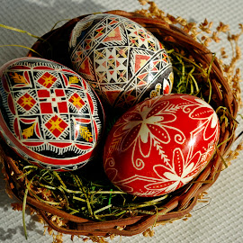 Happy Easter! by Ciprian Apetrei - Public Holidays Easter ( eggs, traditional, decorations, easter, brittany )