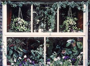 Photo: Mein Erkerfenster in den guten Zeiten des Hauses