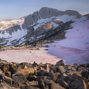 Summer Snow by Ramsey Samara - Landscapes Mountains & Hills ( tioga pass, sierra nevada, north peak, talus, sierras )
