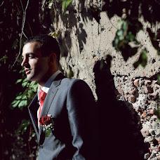 Wedding photographer Ivan Ponomarenko (pjphoto). Photo of 12.11.2013