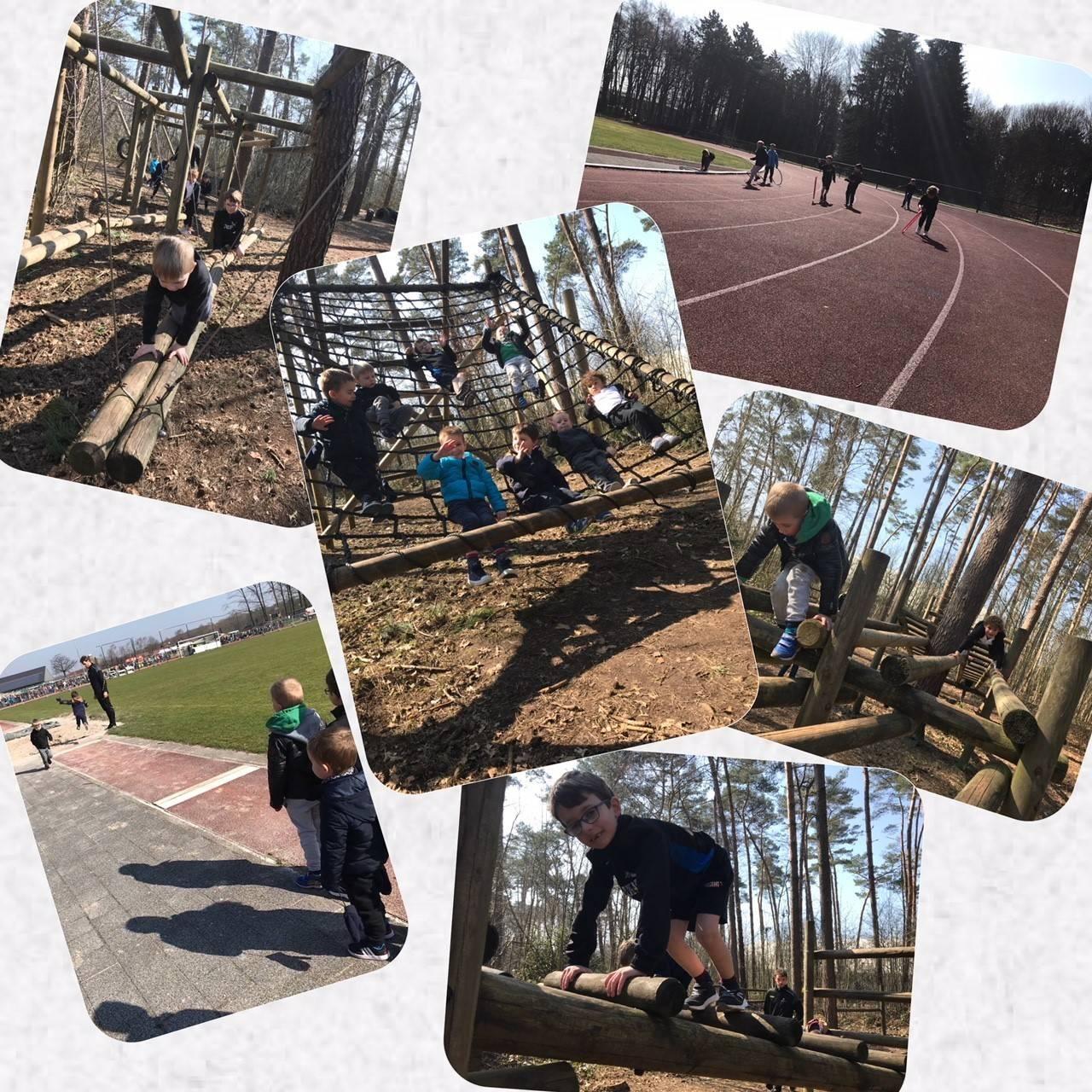 Sports Academy Multimove 25-03-2018