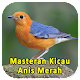 Masteran Kicau Anis Merah Download on Windows