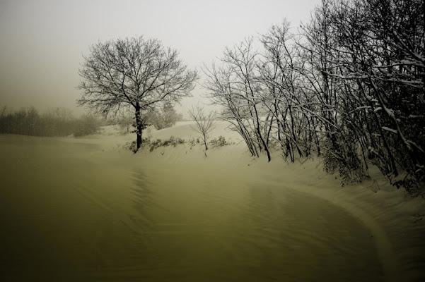 Il senso di Smilla per la neve di giothebike
