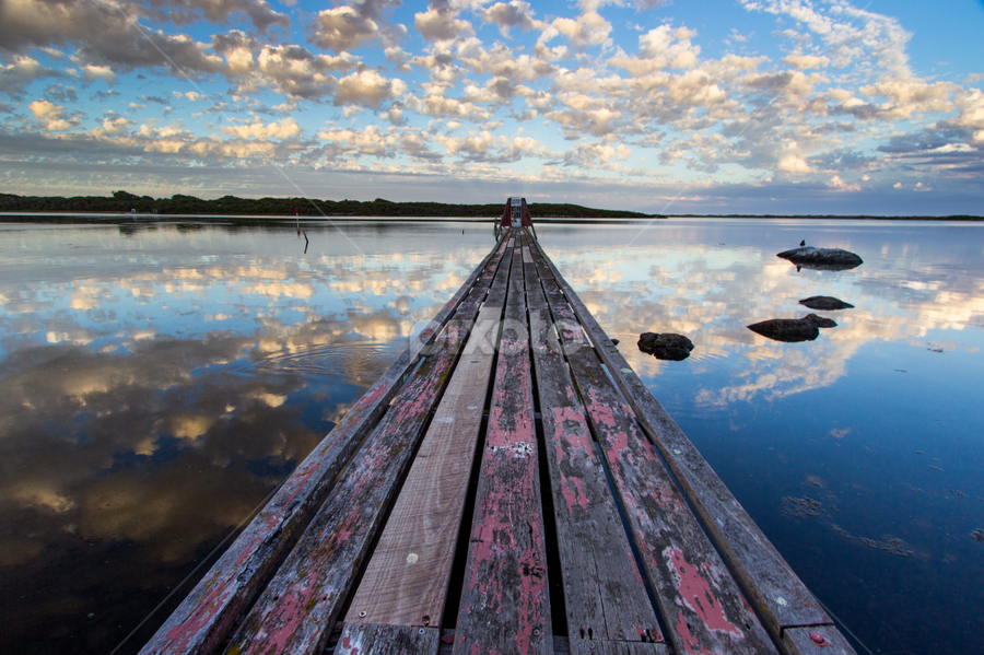 Pelican Jetty by Tahlia Smart - Landscapes Waterscapes ( reflection, sunset, australia, summer, cloudscape, jetty, river )