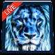 Lion Magic Touch Live wallpaper 2018 apk