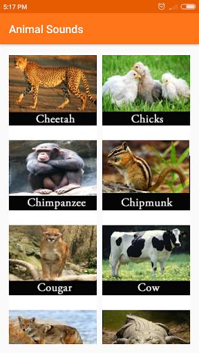 Animal sounds 1.01.0 screenshots 3